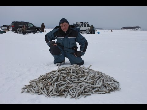 подледная рыбалка видео 2017 года