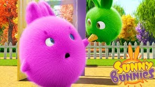 Cartoons for Children | Sunny Bunnies SHARING IS CARING | Funny Cartoons For Children