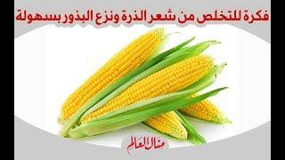 اسهل طرق التخلص من شعر الذرة ونزع البذور بسهوله