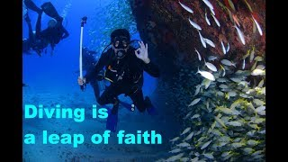 Awe-inspiring video of the day - Scuba Diving free download