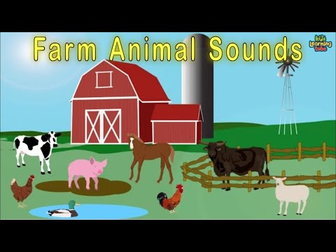 Animal Sounds Song / Farm Song