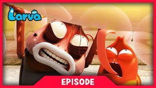LARVA - GUMFART | Cartoon Movie | Cartoons For Children | Larva Cartoon | LARVA Official