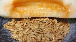 Here is Why You Should Not Throw Away Melon seeds!