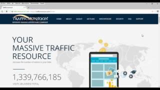 Trafficmonsoon: Account Status - Pending
