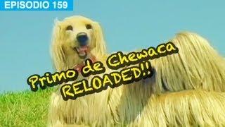 El Regreso del Primo de Chewaca!! l whatdafaqshow.com