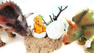 공룡메카드 알공룡 트리케라! Dinosaur Eggs Hatching. Triceratops born in eggs. Dinosaur Movie. Fun Toys~