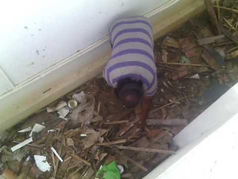 Bangarpet Snake Raja catching snake in Ramachandra congress home