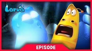 LARVA - GHOST | Cartoon Movie | Cartoons For Children | Larva Cartoon | LARVA Official