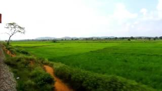 Train, beautiful paddy fields & distant blue mountains