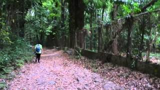 University of the Philippines Los Baños on April 16, 2014 (Part 44)