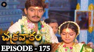 Episode 175 | Chakravakam Telugu Daily Serial