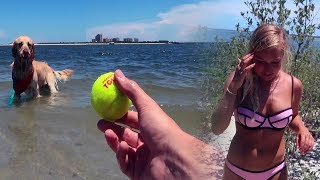A DAY AT THE DOG BEACH (Super Cooper Sunday #104)