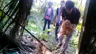 Discovery bangla man vs wild with ardho p 2