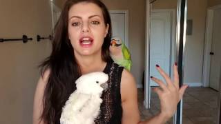Are You Sexually Frustrating Your Parrot? HORMONAL PARROTS | PARRONT TIP TUESDAY