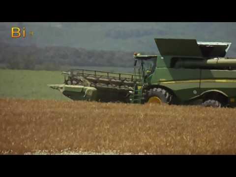 *INTRO* Big Team Summer Harvest (Boly MG Zrt.,Borjád MG Zrt.) Árpa aratás,Bálázás