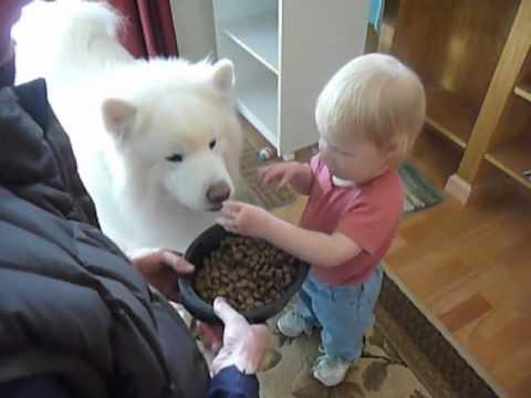 best friends 2 feeding Bear