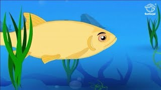 Tales of Panchatantra - The Three Fishes - Moral Stories for Children