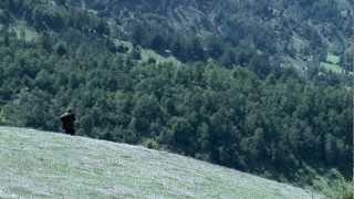 El Sonido del Eco - Trailer