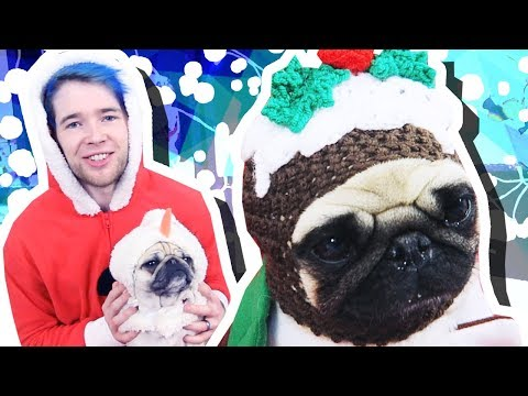 PUGS IN CHRISTMAS OUTFITS