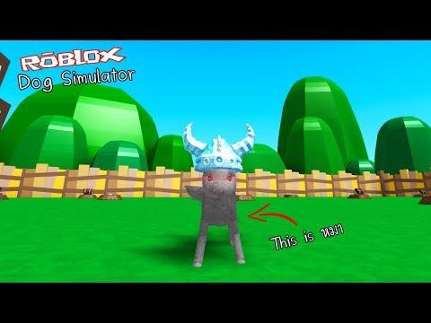 Xxx Mp4 Roblox Dog Simulator จำลองการเป็นหมา ที่หน้าตาไม่เหมือนหมา 3gp Sex