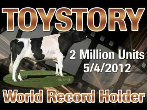 CRI Genética Holandês Recordista Mundial TOYSTORY 1HO07235