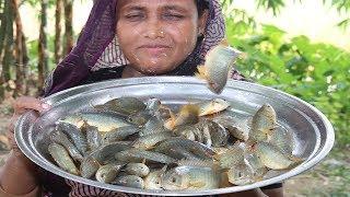 Village Food Koi Mach Vuna Recipe Delicious Bengali Cooking Climbing Perch Fish Curry Tel Koi Recipe