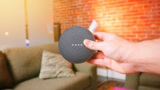 Google Home Mini - 48 Hours Later!