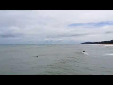 Xxx Mp4 Surfing At Jetty Kijal Kemaman By KSC 3gp Sex
