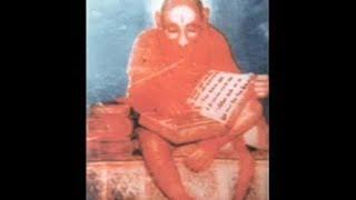 Real Hindu God Hanuman caught on camera.