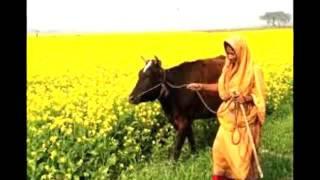 মিথ্যাবাদী মা   প্রত্যেকে নিজের মাকে      বাংলা কবিতা আর গল্প।   Facebook