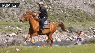 Daredevil hobby: Horse-powered ride in a rocky river in Kyrgyzstan
