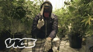 Drugs, Prostitution, & Diesel Conversion: Criminal Opportunists Thrive Amidst UK Housing Crisis