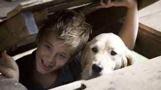 Gone Doggy Gone Full Movie