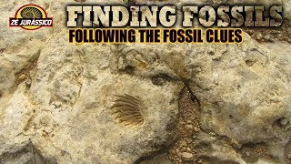 Finding Fossils - Following the Fossil Clues