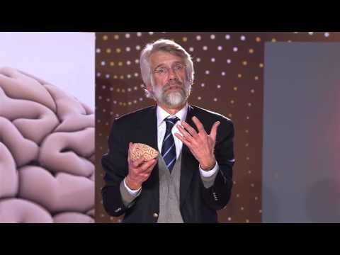 Xxx Mp4 Waarom Vernietigt Vanillevla Onze Hersenen Prof Dr Erik Scherder 4 5 3gp Sex