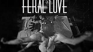 Mr. James March/Evan Peters - Feral Love (American Horror Story)