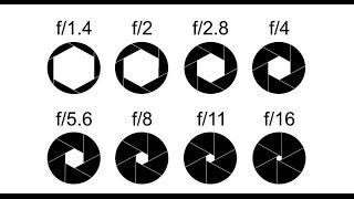Beginner DSLR Photography basics: Aperture and depth of field guide