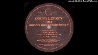 Sensory Elements - Explain It [AZNY 04]