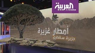 """""""مكونو"""" .. تعرف على العاصفة التي تكونت في بحر العرب وستتحول إلى إعصار"""