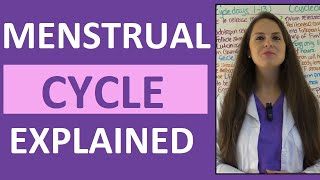 Menstrual Cycle Phases | Female Reproductive System | Follicular Luteal Proliferative Secretory