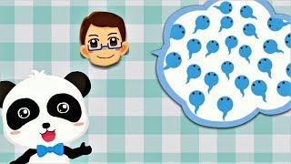 Baby Panda Learn Male and Female - Fun Educational Games For Toddlers & Kids