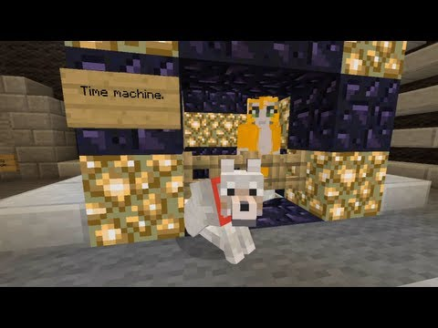 Minecraft Xbox Cat To The Future 100