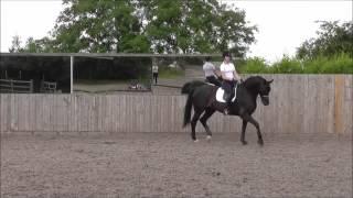 K.Clarke riding De Galles