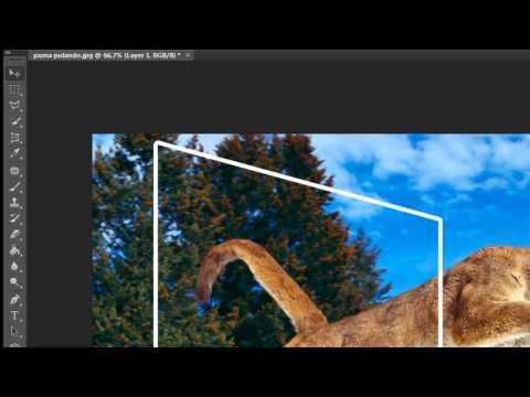 Criando efeito 3D em imagem com o Photoshop CS6