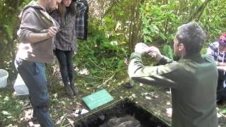 Coastal Field Archaeology At The Bamfield Marine Sciences Centre, July - August 2013