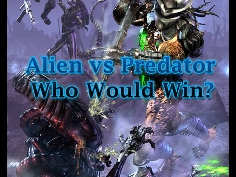 watch Alien vs Predator - Who Would Win?  I Mean Really