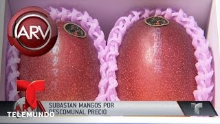 Subastan mangos por 3600 dólares | Al Rojo Vivo | Telemundo