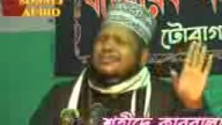 Maulana Mosharraf Hossain Helali  ( sahadat a karbala )