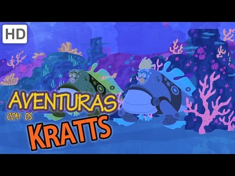 Aventuras com os Kratts – Recife de Corais e Cavalos Marinhos