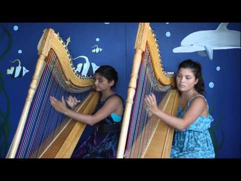 Luz Marina Harp Duo Pájaro Campana